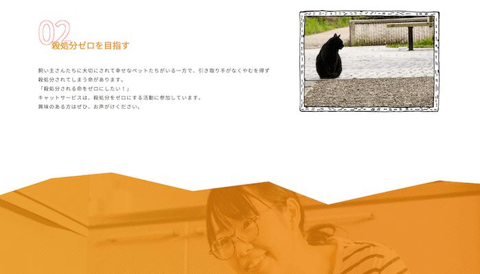 殺処分0を目指す横浜川崎の猫専門ペットシッター